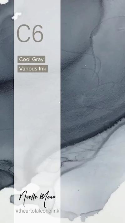 C6 Cool Gray